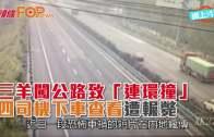 三羊闖公路致「連環撞」 四司機下車查看遭輾斃