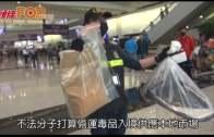 藏$240萬可卡因機場被捕  19歲六呎歐洲女模被捕