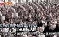 內地婦染全球首宗H7N4  袁國勇:街市不應有活雞