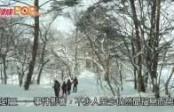 雪地任我行  福島五色沼