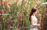 韓式婚攝公司反擊 邀請公開所有圖片