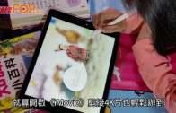 Apple Pencil連動  新iPad探索學習世界