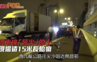 貨車撞「死火」的士 現場遺15米長胎痕