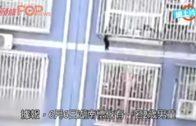 2歲童卡在5樓鐵窗框  退伍兵徒手攀上救人