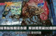一條領航鯨擱淺泰國 解剖揭胃藏80個膠袋