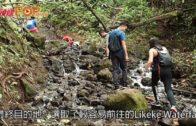 夏威夷竹林瀑布 感受自然之美