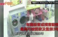 懷孕貓遭塞乾衣機烘死  大馬警緝兩賤男