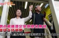 被質疑支持港獨  劉小麗參選提名裁定無效