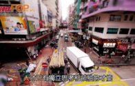 陶傑︰港府應發照會 表明香港充滿人才