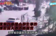 遼寧汽車撞小學生事件 嫌犯因夫妻矛盾厭世