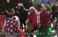 三藩市聖誕老人大集會歡樂迎佳節