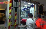 男子恆安邨單位疑燒炭亡  兩人受傷五貓死亡