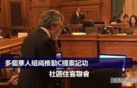 多個華人組織推動C提案記功