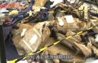 獅航客機墜毀釀189死 印尼尋回關鍵「黑盒」