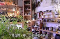 情侶檔栽種快樂 工業區賣植物