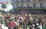 阿爾及利亞總統離職  民眾上街慶祝