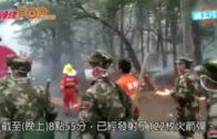 瀋陽棋盤山火災疏散萬人  波及關東影視城