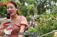 「歌嫂」唱歌獲打賞  劉江華指接受利是無違法