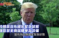 特朗普宣布國家緊急狀態 鋪路禁美商採購華為設備