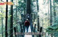 直航溫哥華  走過世界最長吊橋