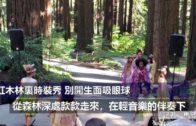 (國)紅木林裏時裝秀別開生面吸眼球