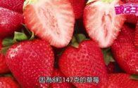 【7月23日親子Daily】  低糖水果排行榜