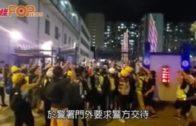 記者被催淚彈擊中  行家一度被捕後獲釋
