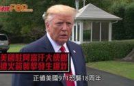 (粵)僑界發起29日抗病毒反歧視遊行