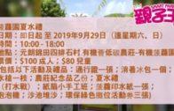 【9月26日親子Daily】  3招避免小朋友在車上發生意外