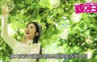 【活動資訊】與吉蒂小木木結伴 甜蜜暢遊蘋果森林