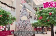 【12月11日 親子Daily】家中自製BB副食要小心!