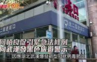 何栢良促引緊急法修例 向武漢發黑色旅遊警示