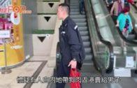 疑交收內地狗肉遇警截查  葵涌2男女被帶走調查