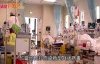 日韓均確診第2宗個案  越南一對武漢父子確診