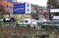 伊朗最高精神領袖顧問 染新型肺炎不治