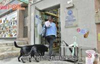 確診者愛犬反覆驗出弱陽性  漁護署:低程度感染