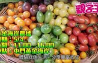 【活動資訊】講求健康飲食  體驗綠色生活