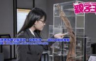 【活動資訊】 解構文物修復  認識傳統工藝