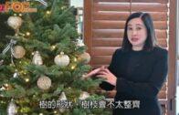 花藝師教授 北歐風聖誕樹布置