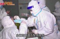 內地周二增115宗確診 黑龍江省進入緊急狀態