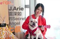 創作歌手J.Arie的狗狗「七叔」 原來是她最好的Secret Angel
