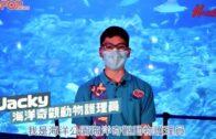 【海洋護理員】海洋公園海洋護理員的日常