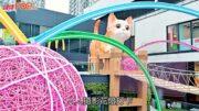 中秋節好去處︳5米超萌貓咪碌入商場