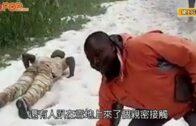 非洲落雪|喀麥隆積雪達5cm民眾穿短袖開心玩雪